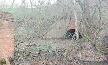 Steenbakkerstunnel 38 in Niel krijgt nieuw leven als wandelverbinding tussen natuurgebieden