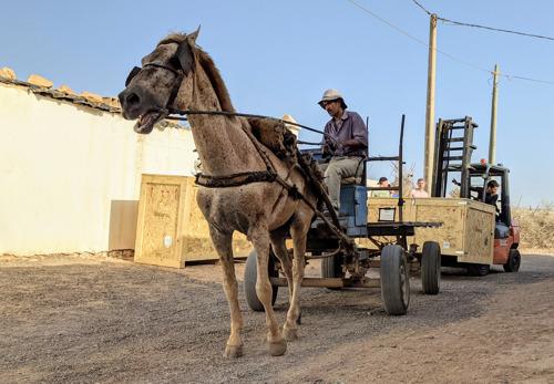 Belgische zonnewagen met paard en kar toegekomen in Marokko
