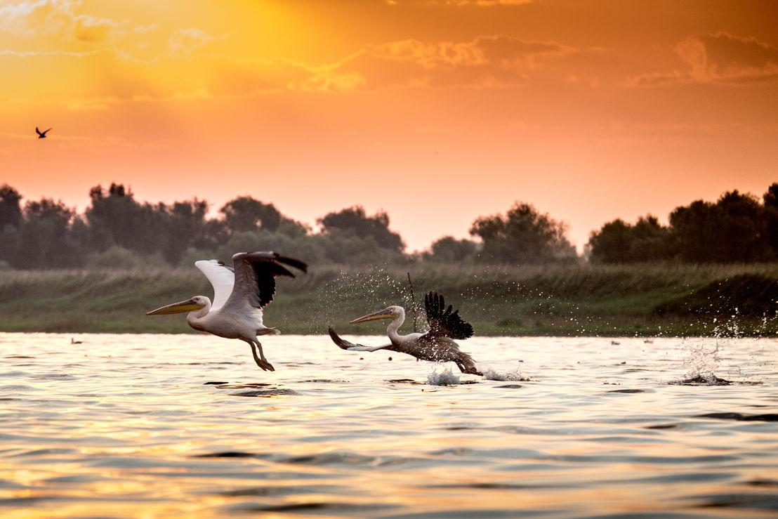 Romania: Danube Delta