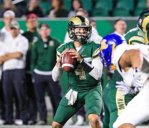 ARGOS SIGN CANADIAN QUARTERBACK NOAH PICTON