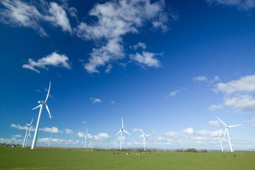 Milieu- en Noord-Zuidbeweging vragen grondwetsherziening om optie klimaatwet open te houden