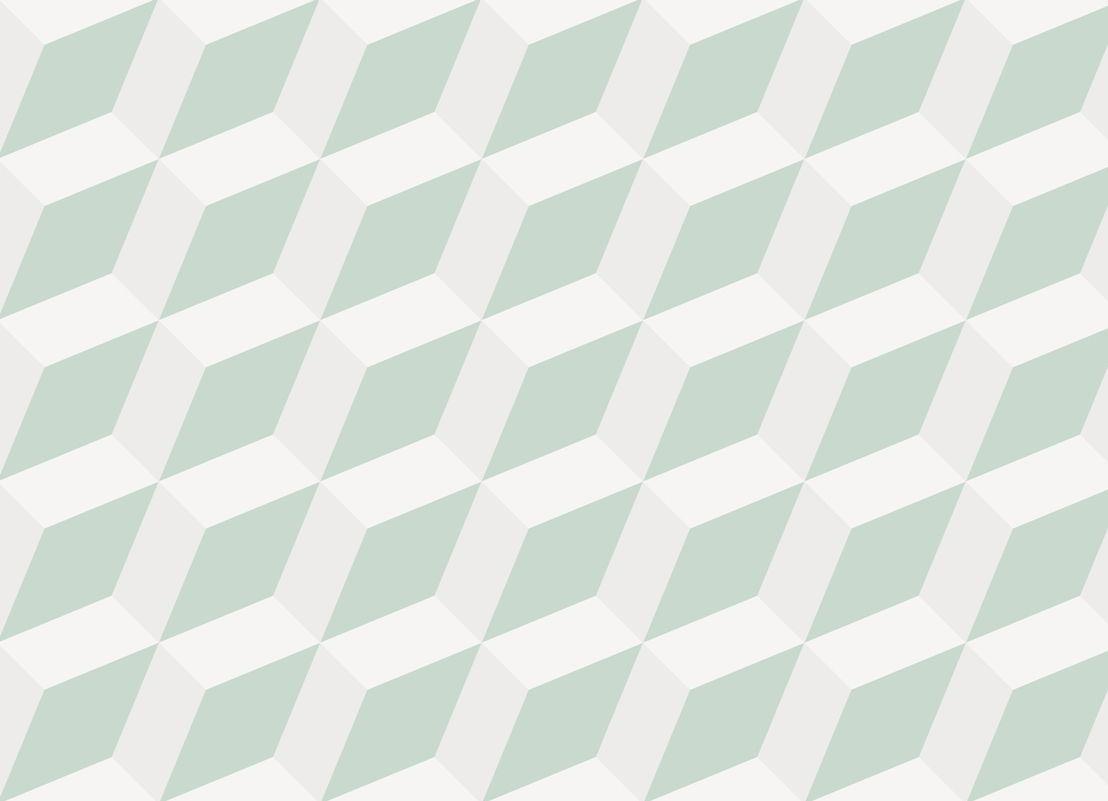 Flex     <br/>Slanted Cube Flooring