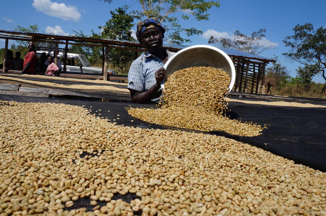 3 miljoen dollar van USAID naar Nespresso en TechnoServe om de koffietelers in Zuid-Soedan te ondersteunen