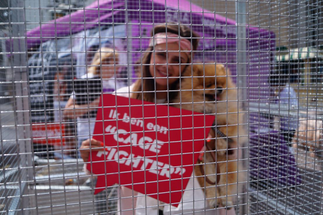 Tientallen 'cage fighters' opgesloten in kooi in Antwerpen