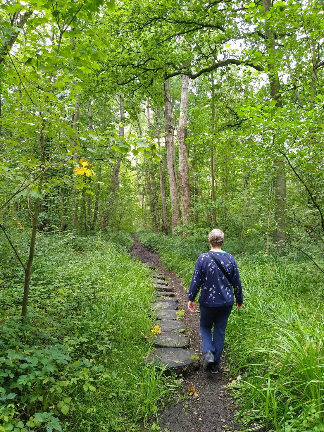 Natuur, natuur en nog eens natuur in de valleien van Zenne, Woluwe en Trawool