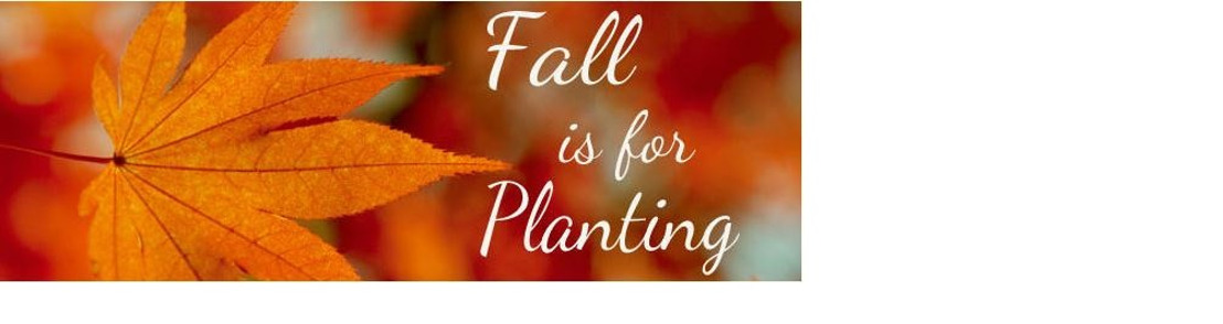 Fall is for planting! Pike Nurseries gives tips and tricks on best gardening practices for the season