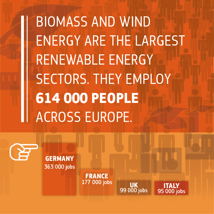 Source: https://www.eurobserv-er.org/16th-annual-overview-barometer