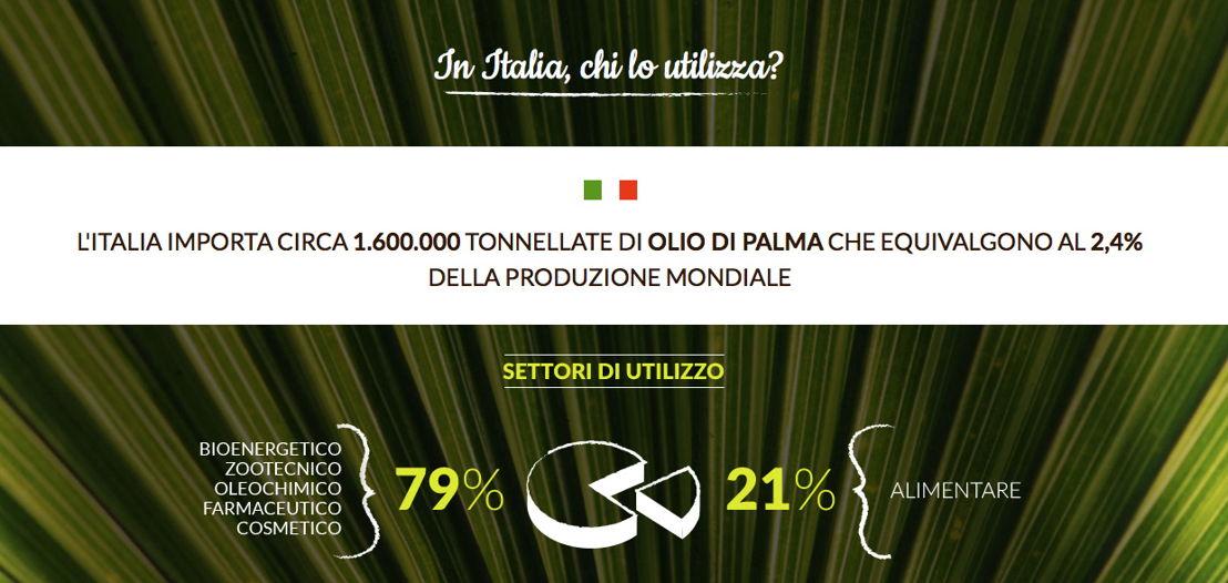 Settori che in Italia usano il palma