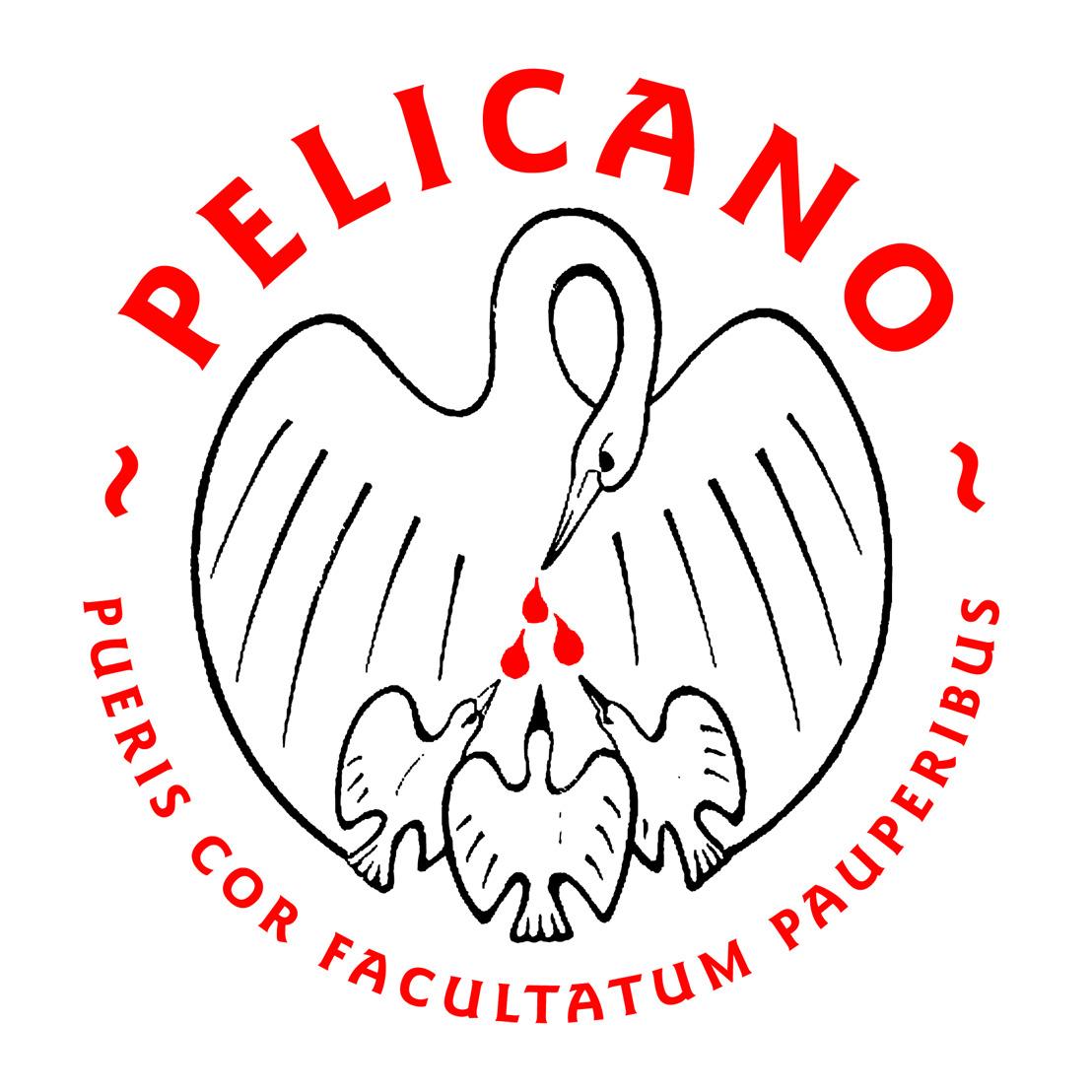 INEOS steunt Stichting Pelicano in haar strijd tegen kinderarmoede