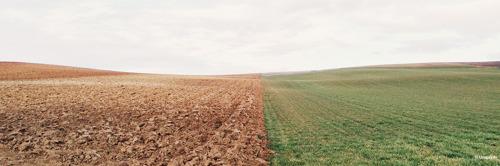 WWF: Belgische overheden moeten samenwerken om klimaat- en biodiversiteitcrisis aan te pakken
