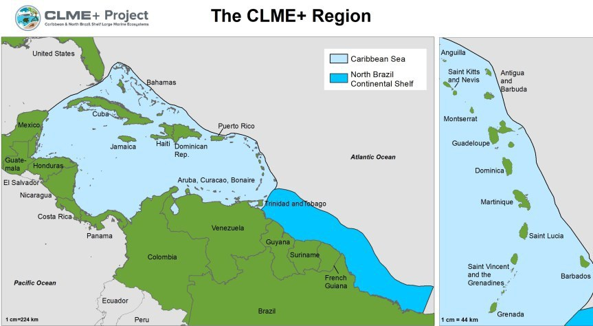 UNDP/GEF CLME+ Project launches consultancy to identify options for a Permanent Policy Coordination Mechanism and a Sustainable Financing Plan for ocean governance in the CLME+ Region