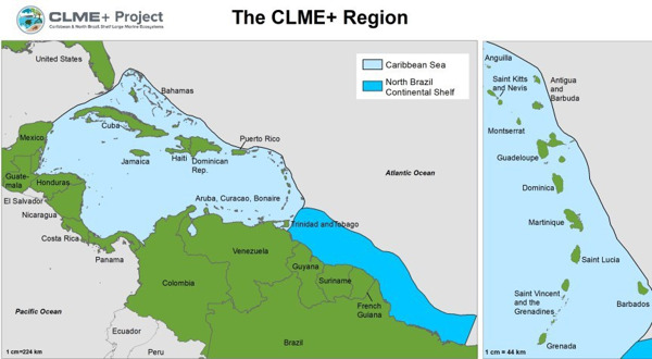 Preview: UNDP/GEF CLME+ Project launches consultancy to identify options for a Permanent Policy Coordination Mechanism and a Sustainable Financing Plan for ocean governance in the CLME+ Region