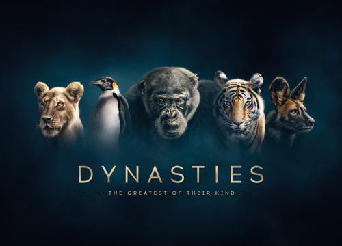 Nieuw op Canvas: Dynasties
