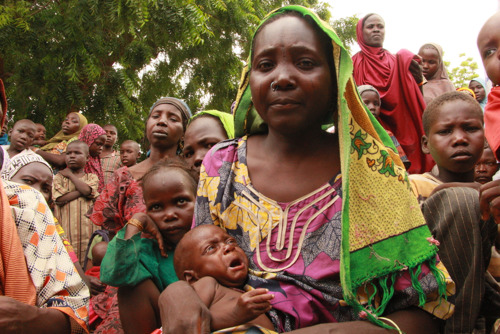 Nigeria: A critical humanitarian situation is unfolding in Bama, Borno State, with severe consequences for young children