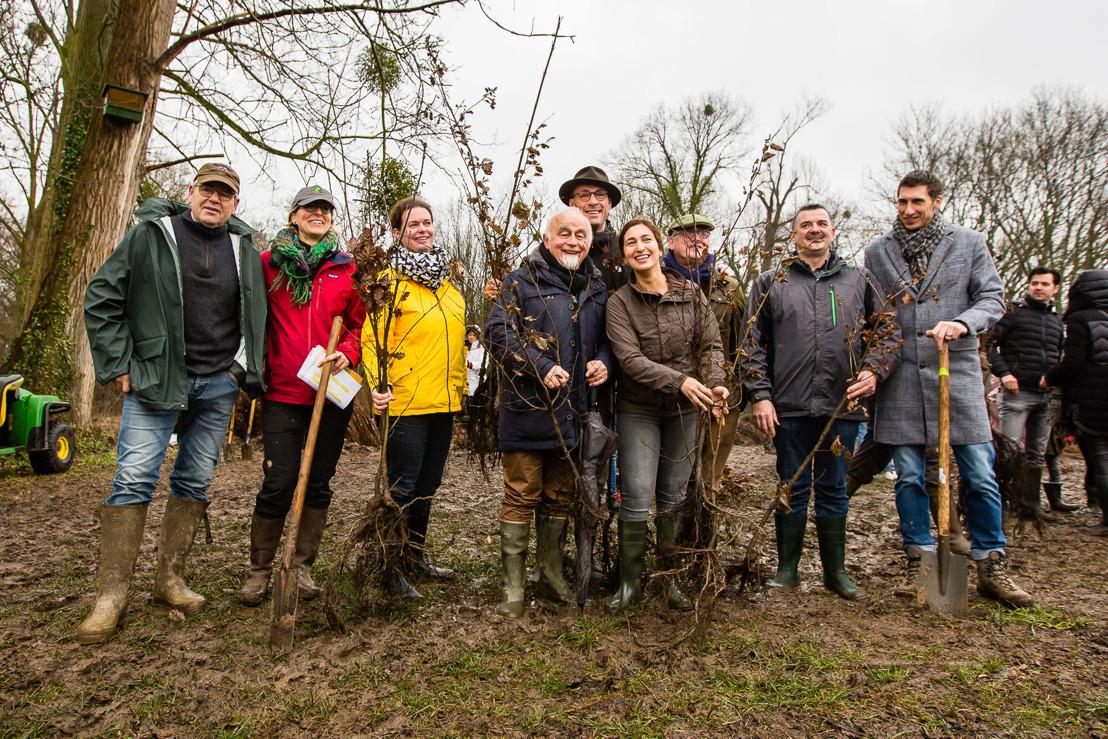 8.850 arbres plantés en un jour à Hoeselt sur un total de 18.000 en Belgique grâce à Forest in One Day