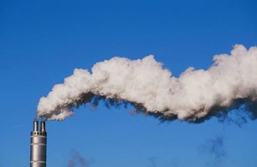 BBL, WWF en Natuurpunt tekenen bezwaar aan tegen voorbarige ontbossing door INEOS