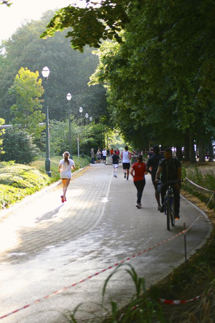 Piste cyclable Avenue de la Renaissance