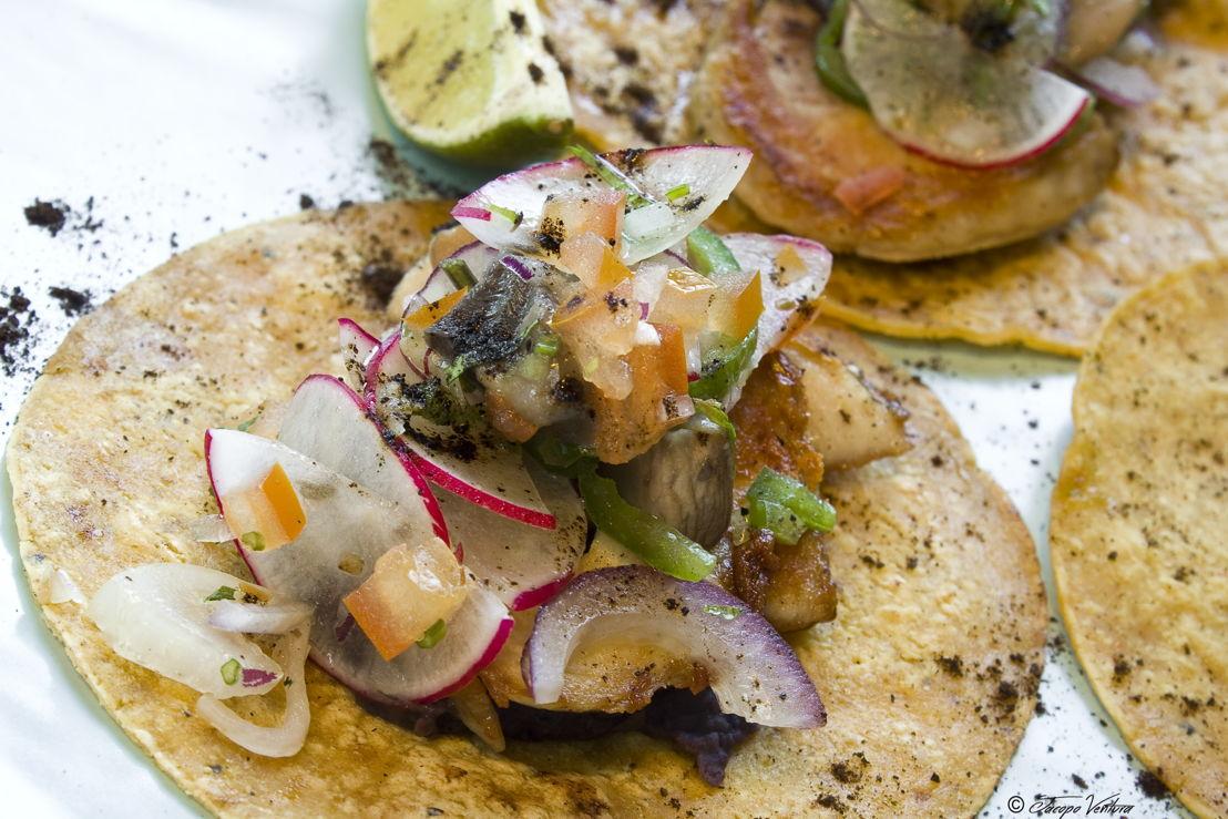 4_tacos di pollo dello chef Gaona