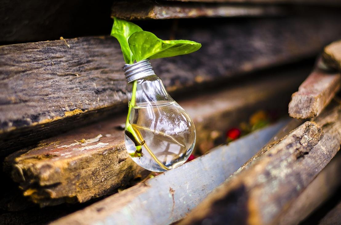 Test para descubrir si eres sustentable o te vale... la Madre Tierra