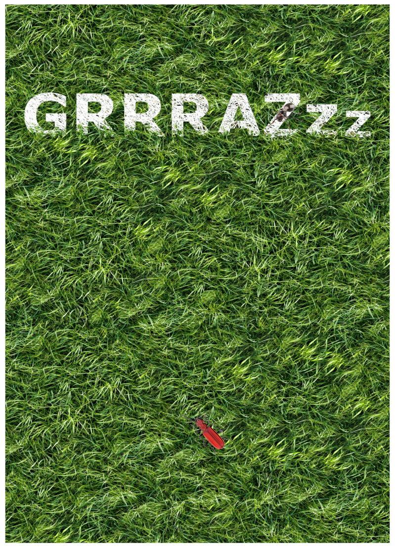 Grrrazzz(c) coucou design