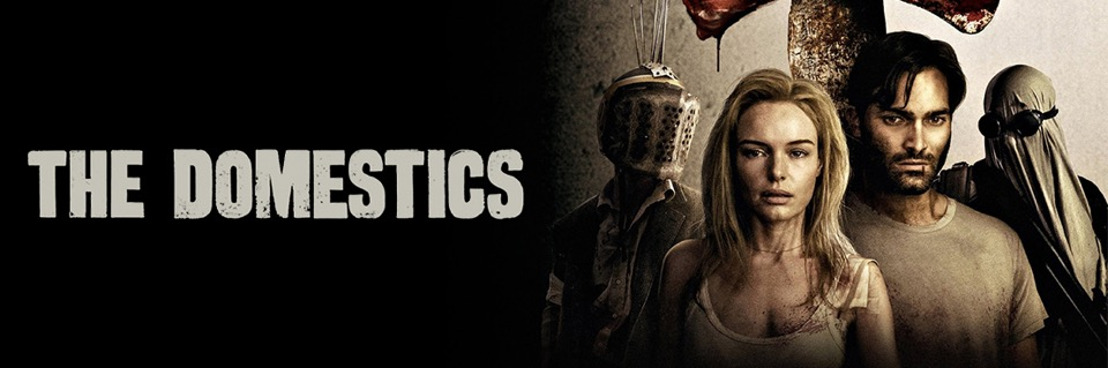 The Domestics: A New Charge into the Post-Apocalyptic World