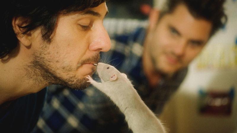 Aflevering 1: de rat- geurzin