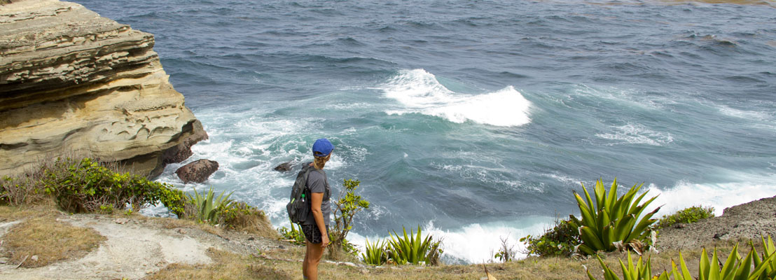 Oceans – the last frontier for OECS States