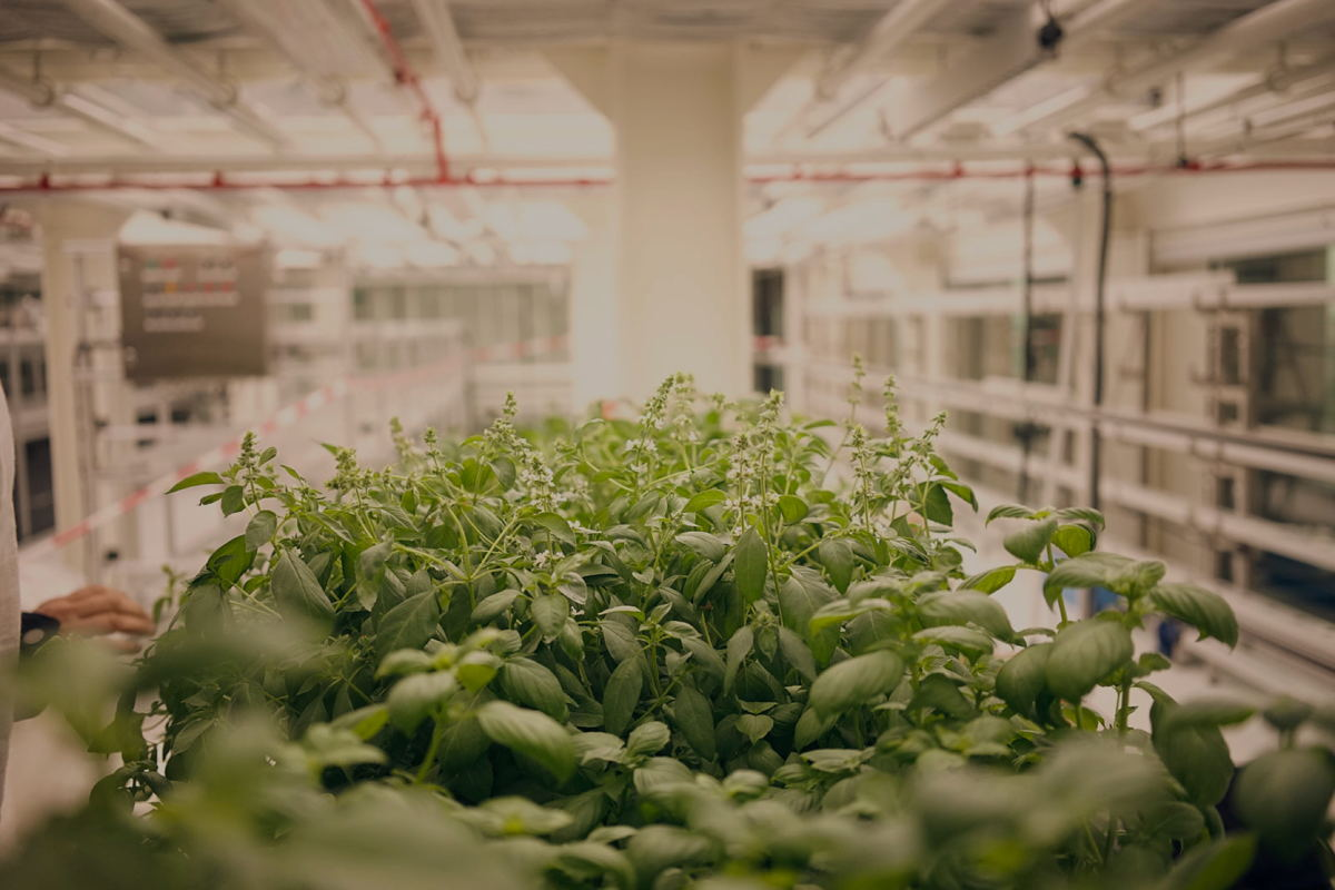 Hi tech food production (beeld: QO Hotel Amsterdam)