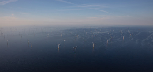 INEOS agrees the largest ever industrial wind power purchase contract in Belgium with ENGIE