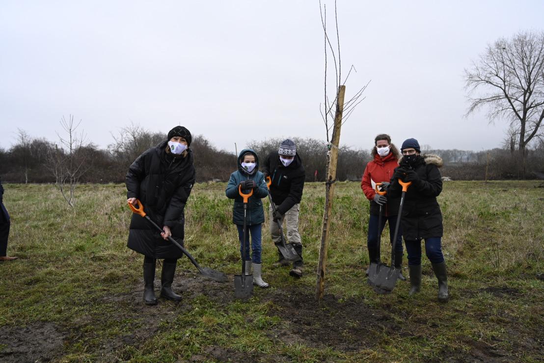 14.000 arbres de plus sur le sol belge grâce à Luminus Forest in One Day