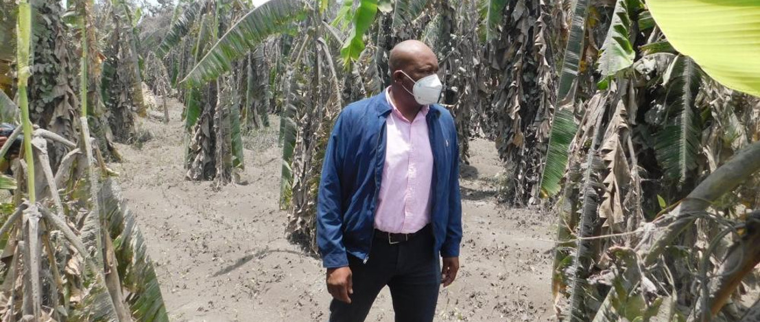 Saint Vincent and the Grenadines Receives a Donation of Seeds From Brazil To Continue with the Recovery of its Agriculture Following The Eruptions Of The La Soufrière Volcano