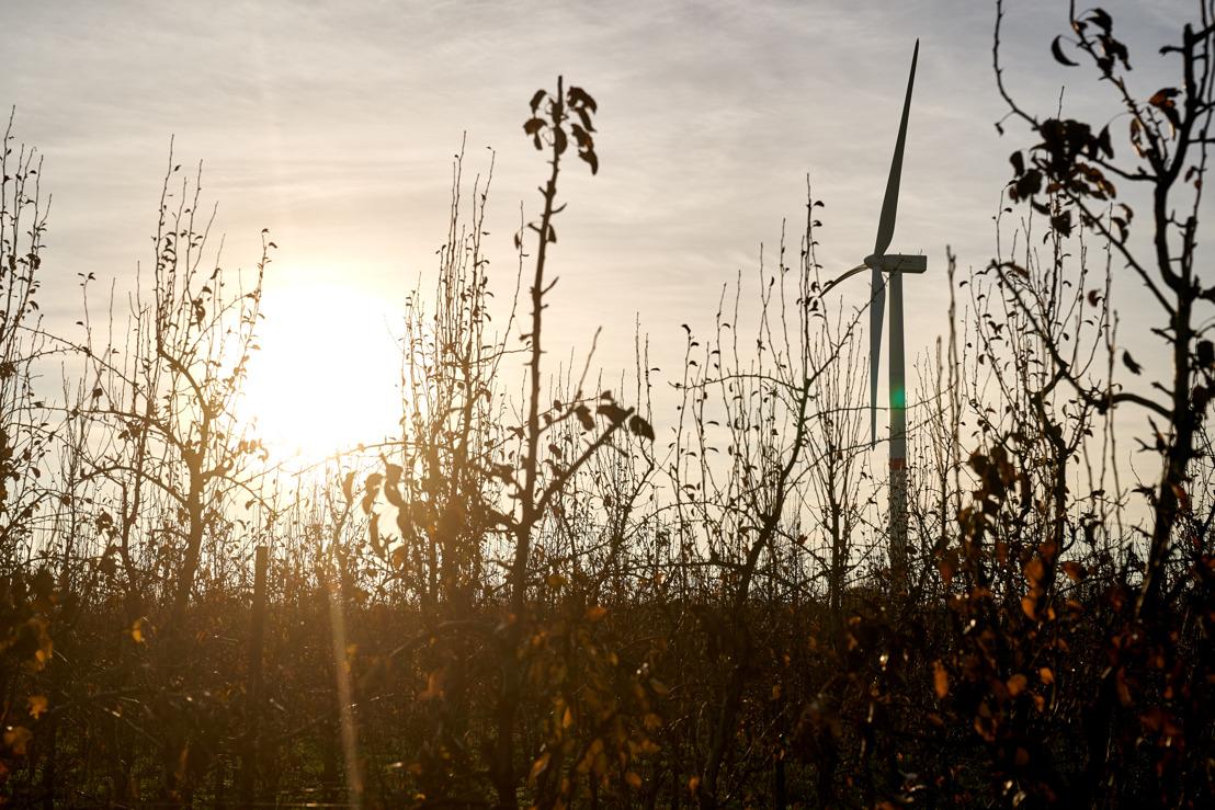 Een project van 4 nieuwe windturbines in 3 deelgemeentes van de stad Bergen