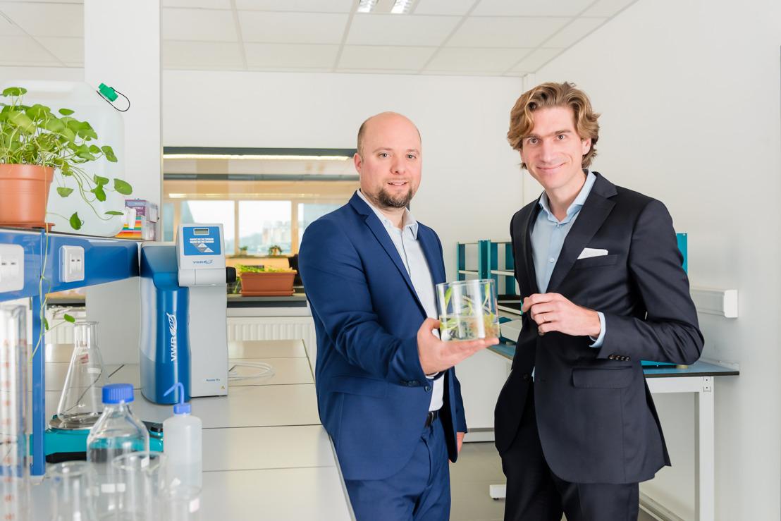 Botalys, de Waalse specialist in de productie van natuurlijke ginseng, haalt 3 miljoen euro op voor een productie-eenheid in Ath