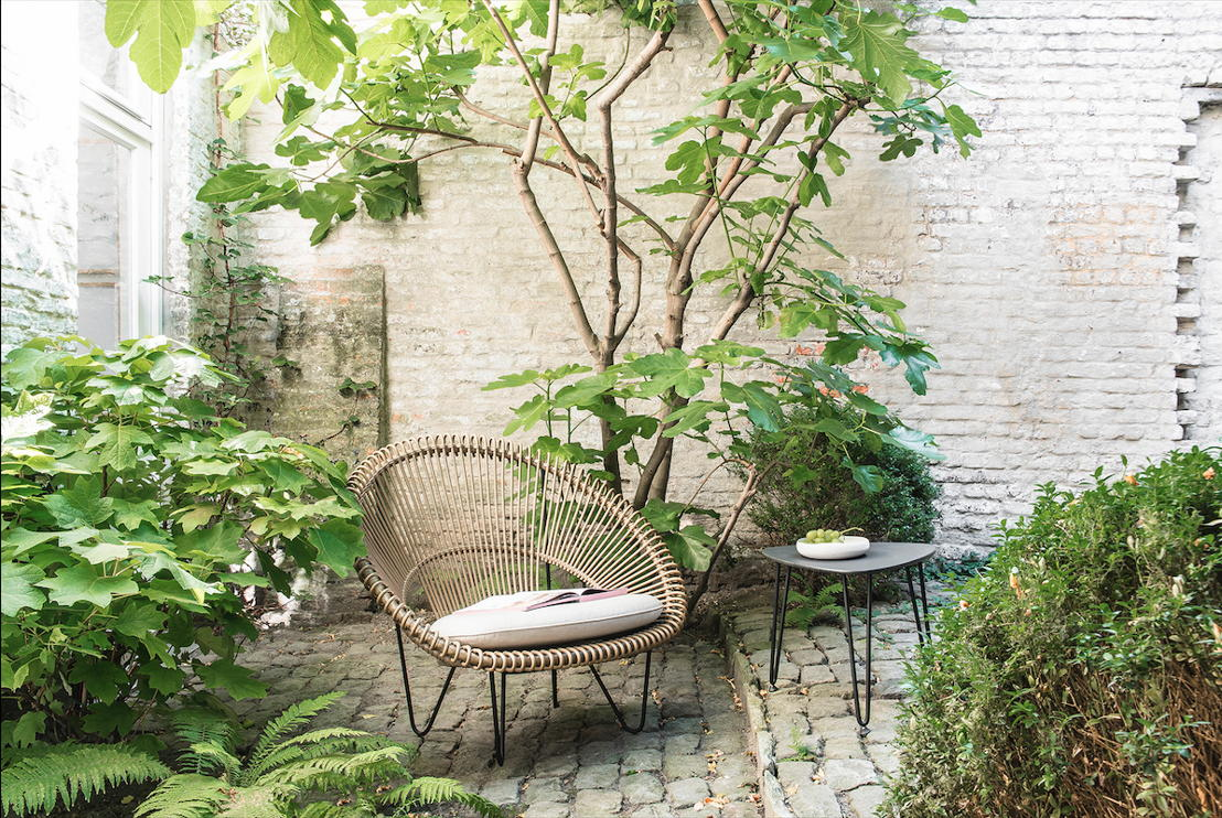 Vincent's Garden