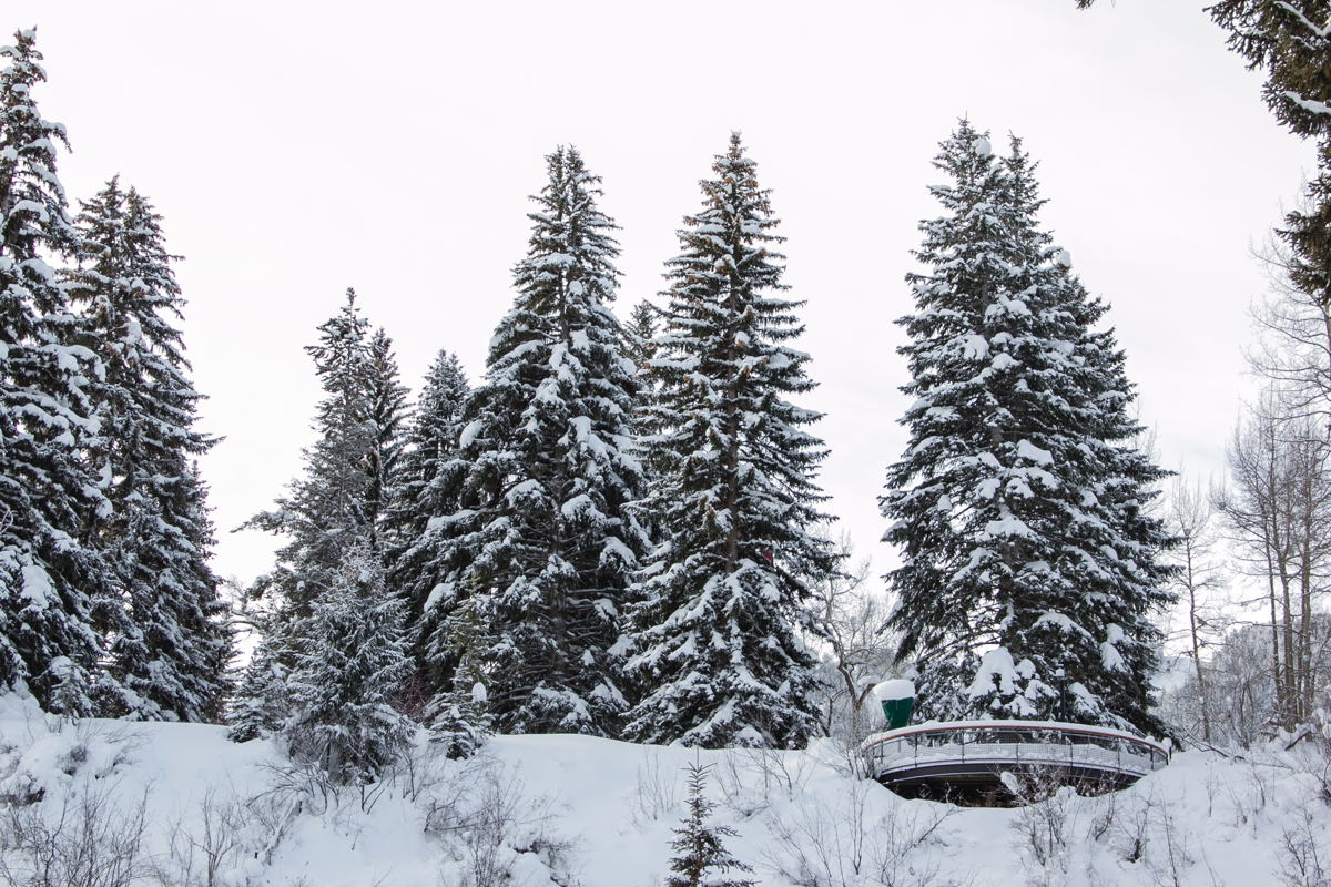 Los espectaculares paisajes de Lake Tahoe invitan a ser fotografiados.