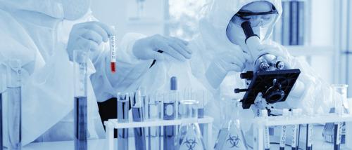 VUB-onderzoekers waarschuwen voor gevaar van foute conclusies in Covid-19 levercelonderzoek