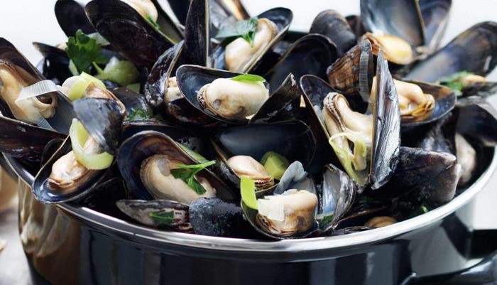 Preview: Mosselen uit Bruinisse: ongekende culinaire diversiteit