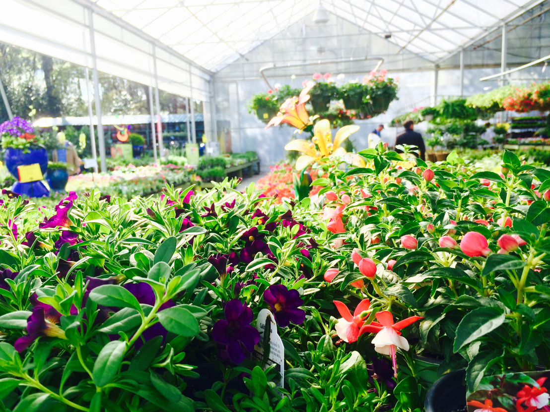 Pike Nurseries to host Grand Opening Garden Party for new Matthews store on October 20