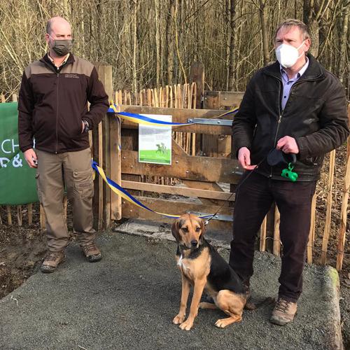 Grote nieuwe hondenlosloopzone verwelkomt honden in Buggenhoutbos