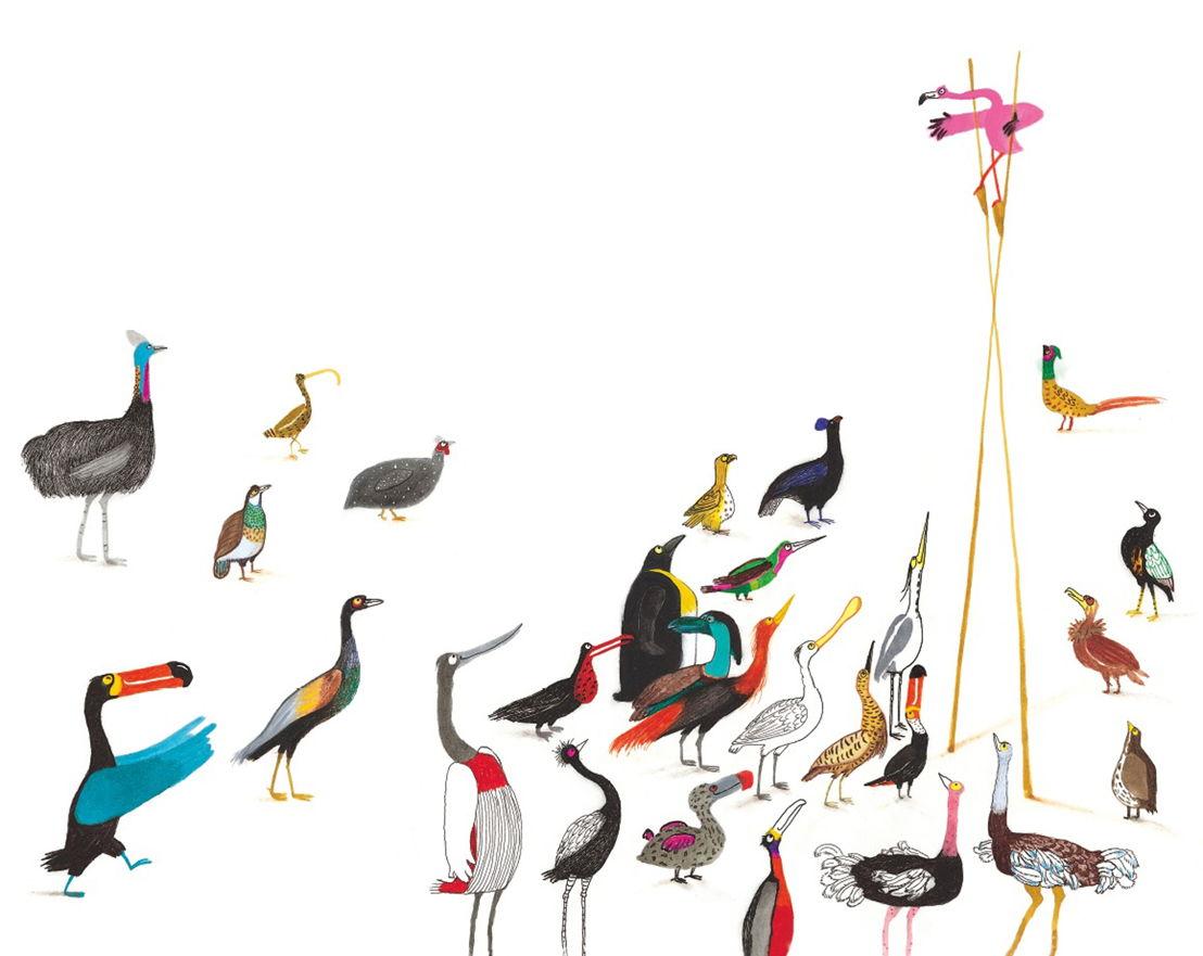 Flamingo(c)Marije Tolman