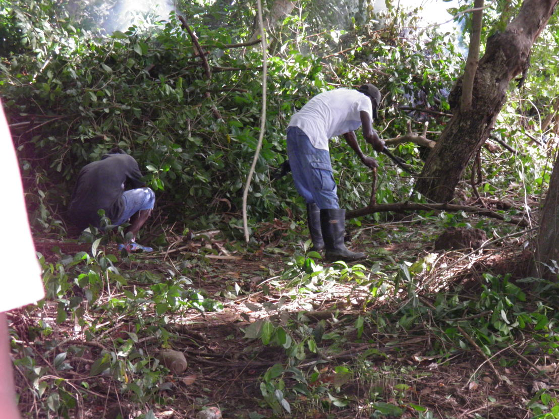 BEFORE: Community workers clear the land.