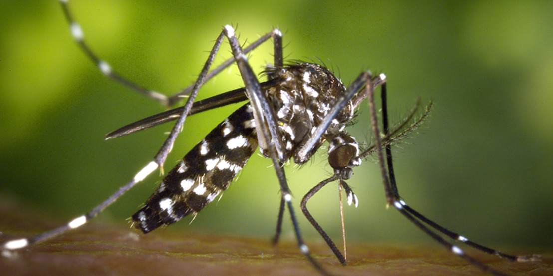 Advocacy from CARPHA and CARICOM Results in Zika Label being Removed from the Caribbean