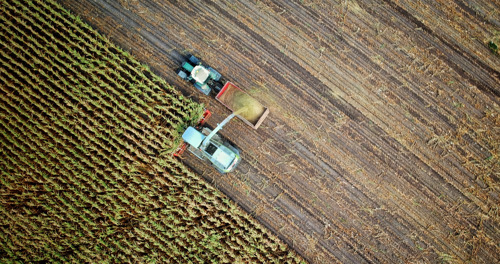 Growers Edge Financial and GROWMARK Partner to Develop Yield Guarantee Program for Farmers