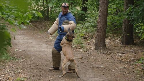 Staf Coppens nieuw gezicht van de campagne 'honden aan de leiband'