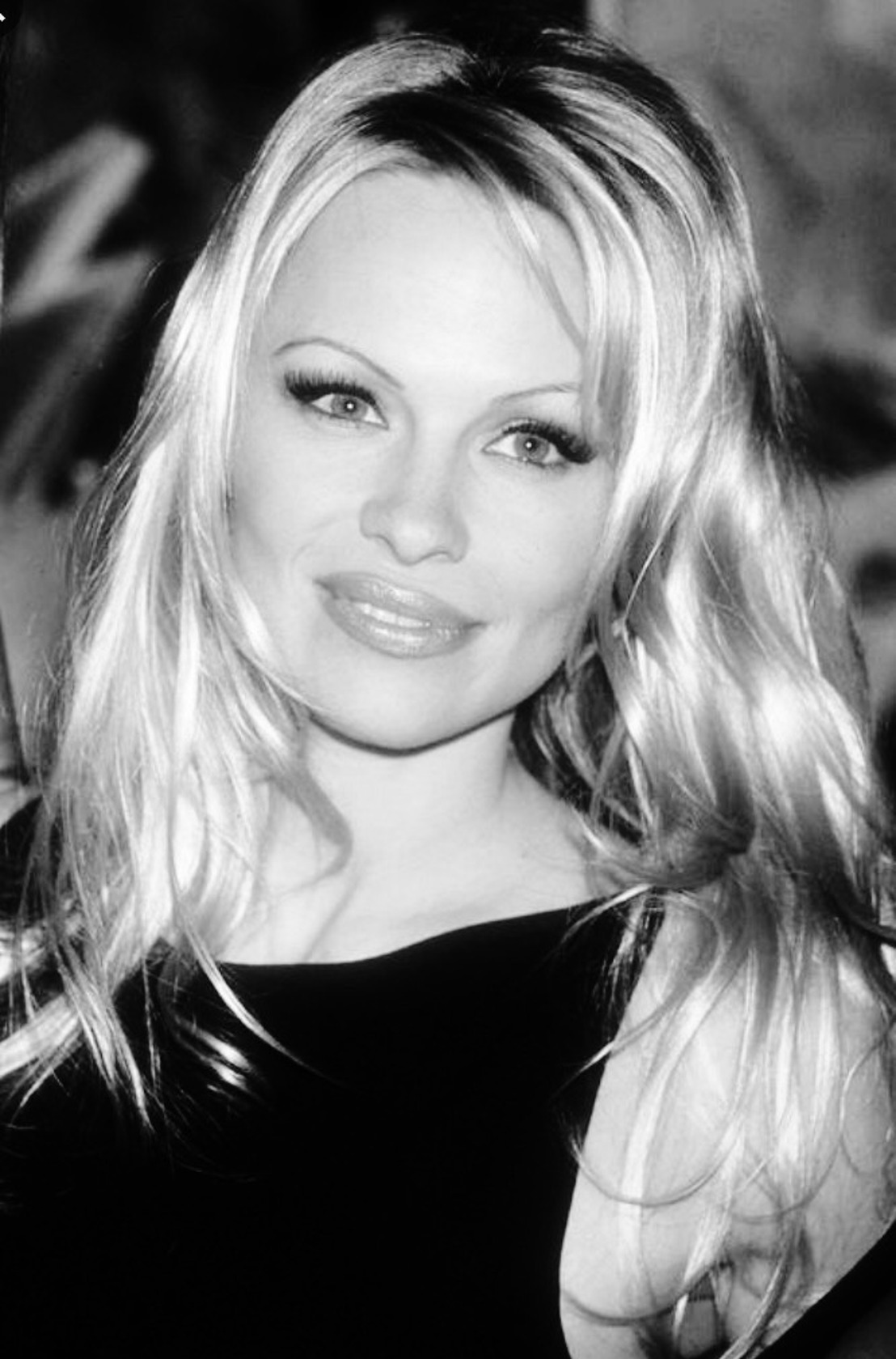 Pamela Anderson writes a letter to Flemish Minister for Animal Welfare, Ben Weyts