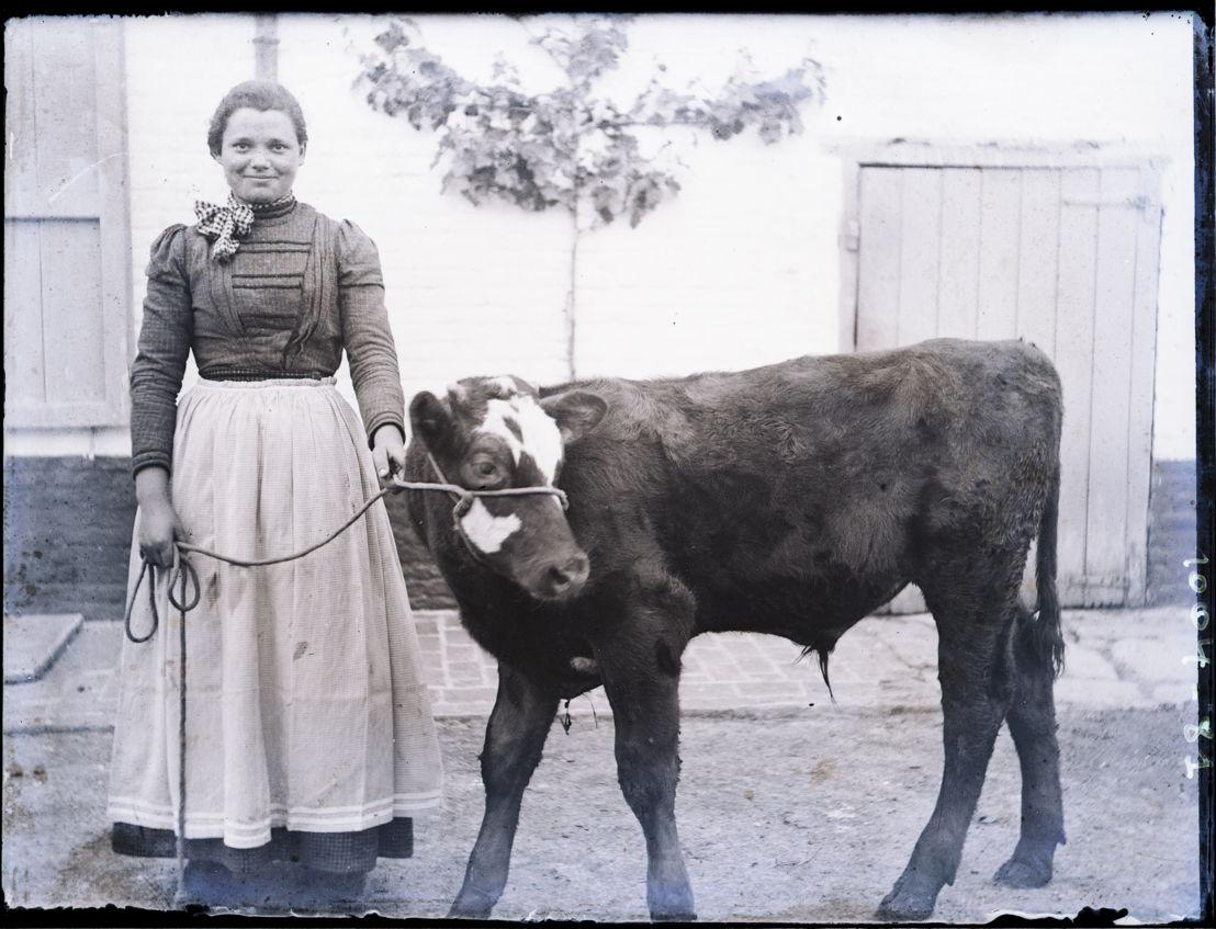 Boerenmeisje met kalfje, foto van Stijn Streuvels, ca. 1905