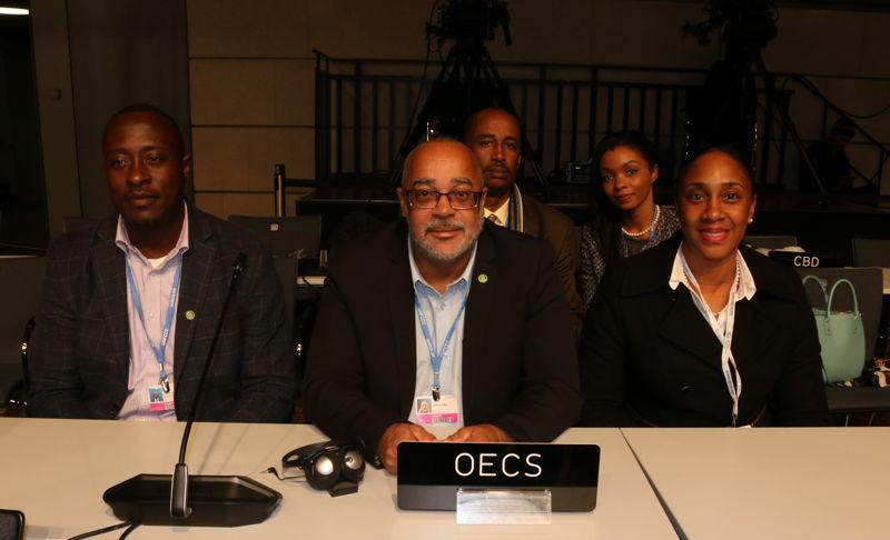 OECS Delegation attends COP23 High Level Segment - Intergovernmental Organisation Addresses.