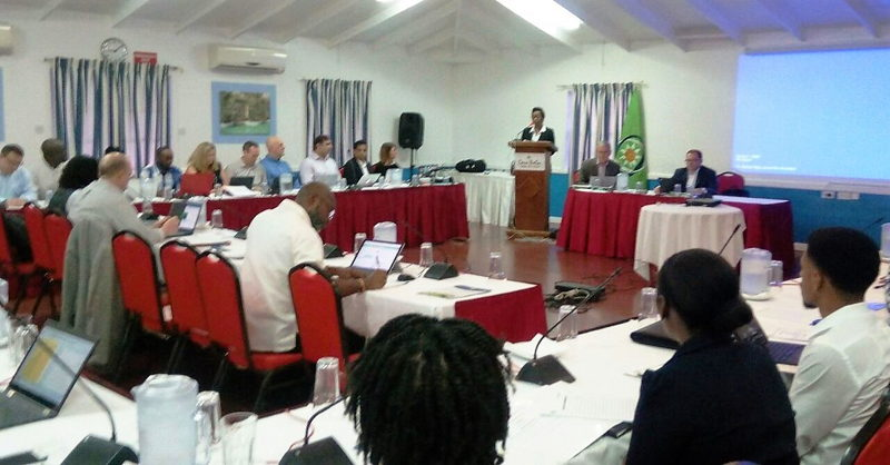 Dr. Gale Archibald, Head of the OECS Statistical Services Unit (SSU), delivers the opening remarks.