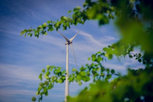 Minister Tommelein huldigt windpark in Lokeren in samen met jonge coöperanten