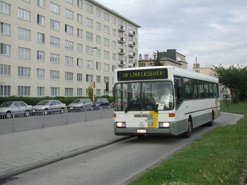 Bus 36 gaat weer hele dag rijden tussen centrum Antwerpen en Linkeroever